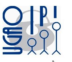 Elkarrizketa Ugao IPIko IKT arduradunari